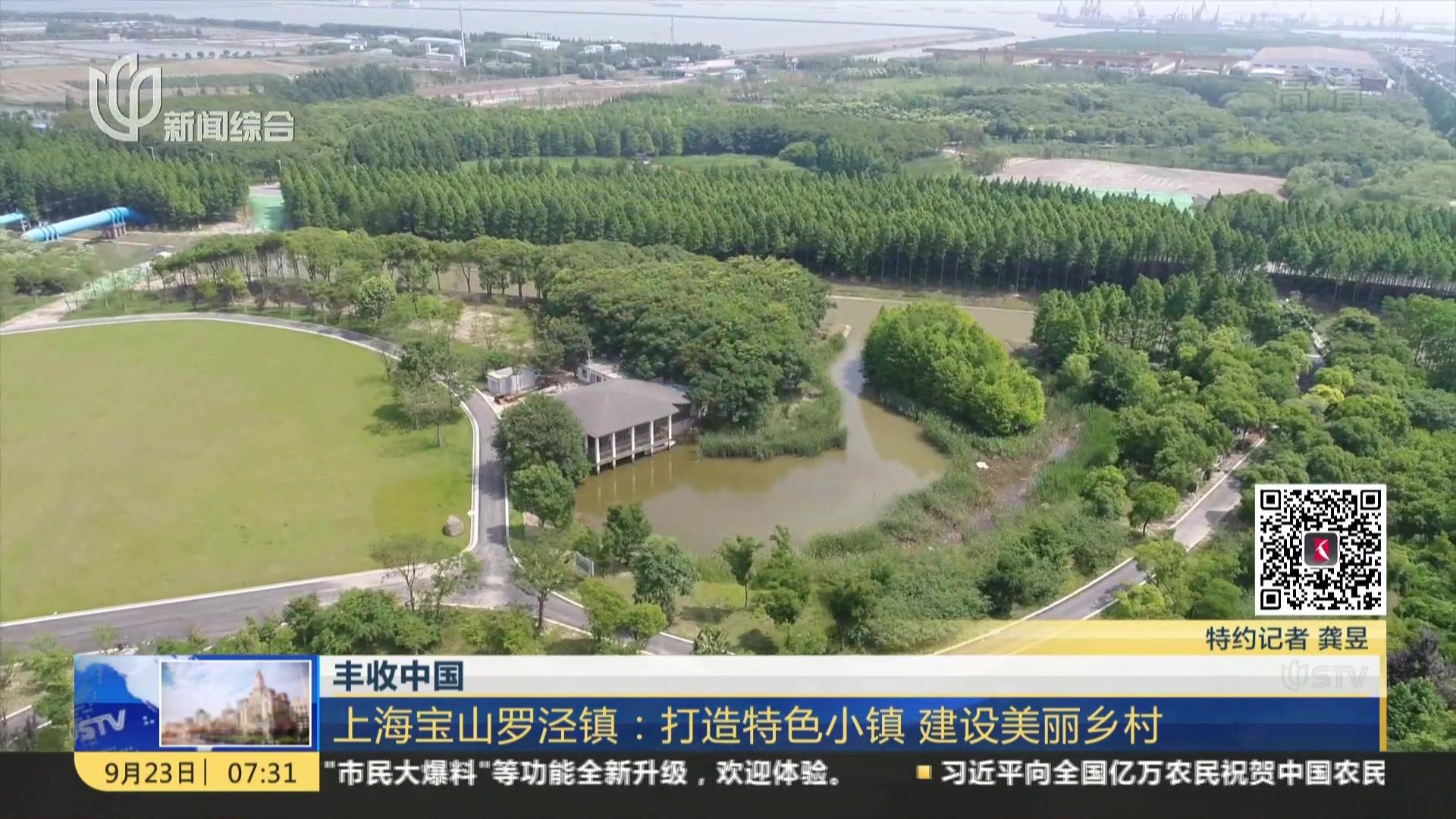 丰收中国:上海宝山罗泾镇——打造特色小镇  建设美丽乡村