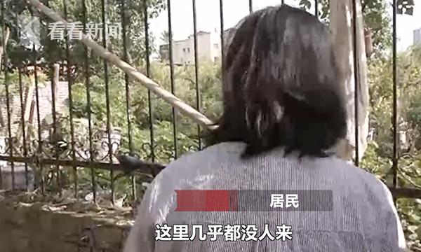 视频|廉租房小区开窗即见坟头居民人心惶惶exe提取视频工具图片