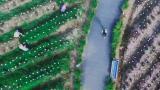 上海健康慈善慢跑11月沪上起跑