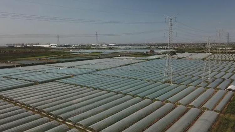9.73亿元!特斯拉在上海临港成功拿地