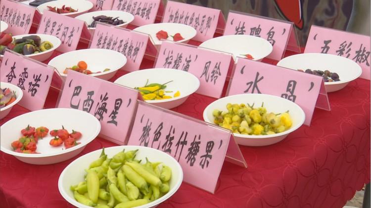 上海滩最能吃辣的人,真的集齐了吗?