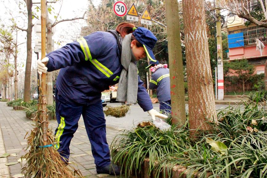 每年冬季道路清扫,成慧投身一线,参与辖区道路环境清洁任务。