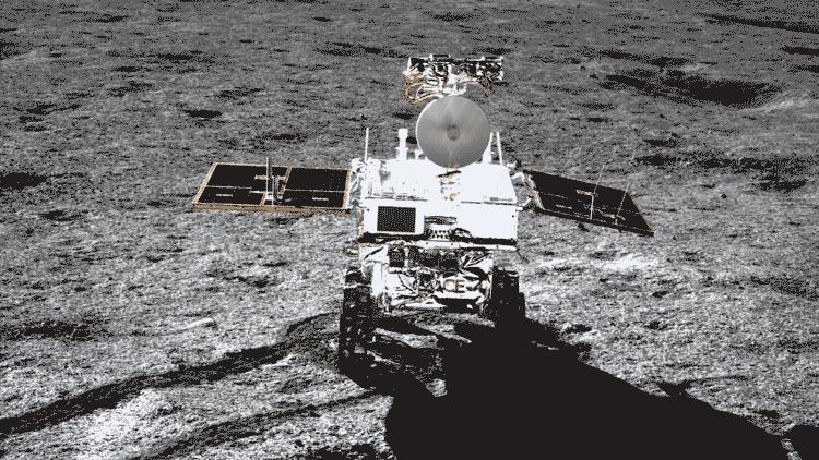 专家解读:六种生物登上月球 为何棉花首先发芽?