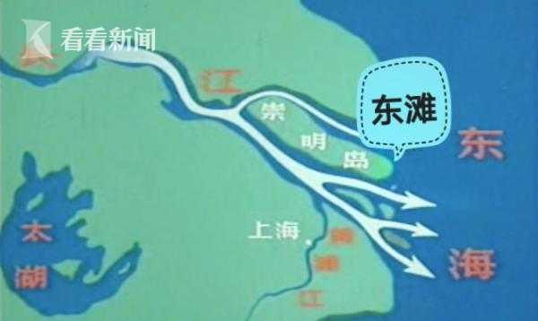 上海崇明东滩