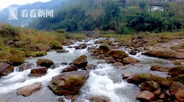 赤水河是长江水生物生命库