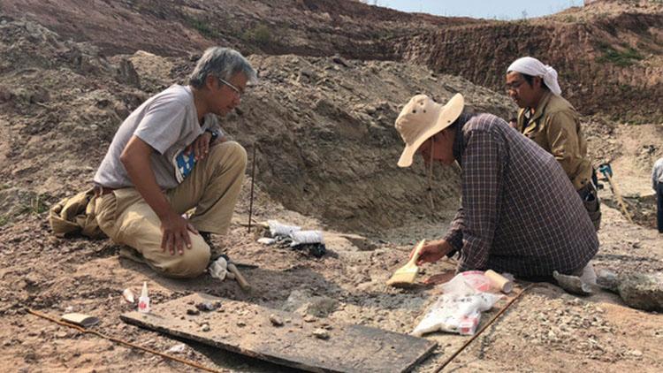 洪水重创小镇 竟意外冲出9500万年前恐龙脚印