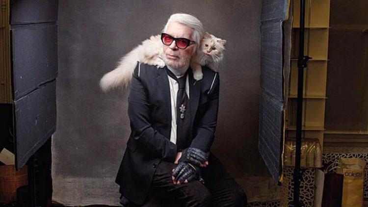 """""""老佛爷""""离世 他一年挣300万欧元的猫怎么办?"""