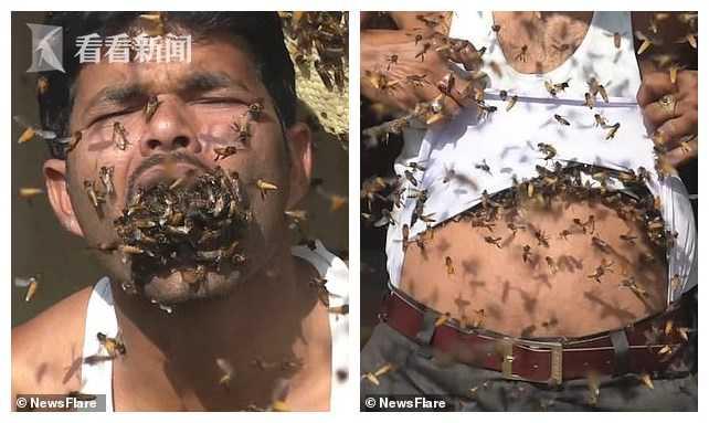视频|男子大把大巴往嘴里塞蜜蜂 养蜂16年对蜂蛰免疫