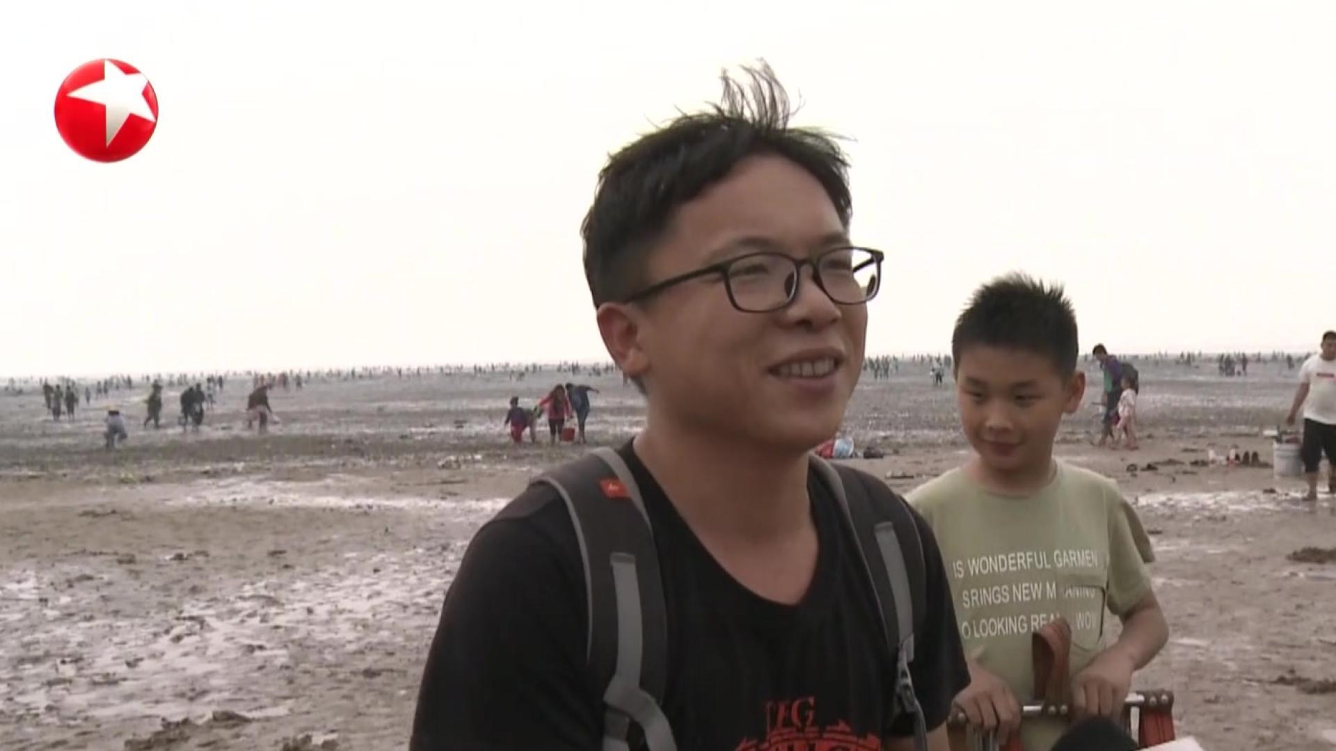 天津:近海滩涂遭采挖  环保人士疾呼保护遗鸥口粮