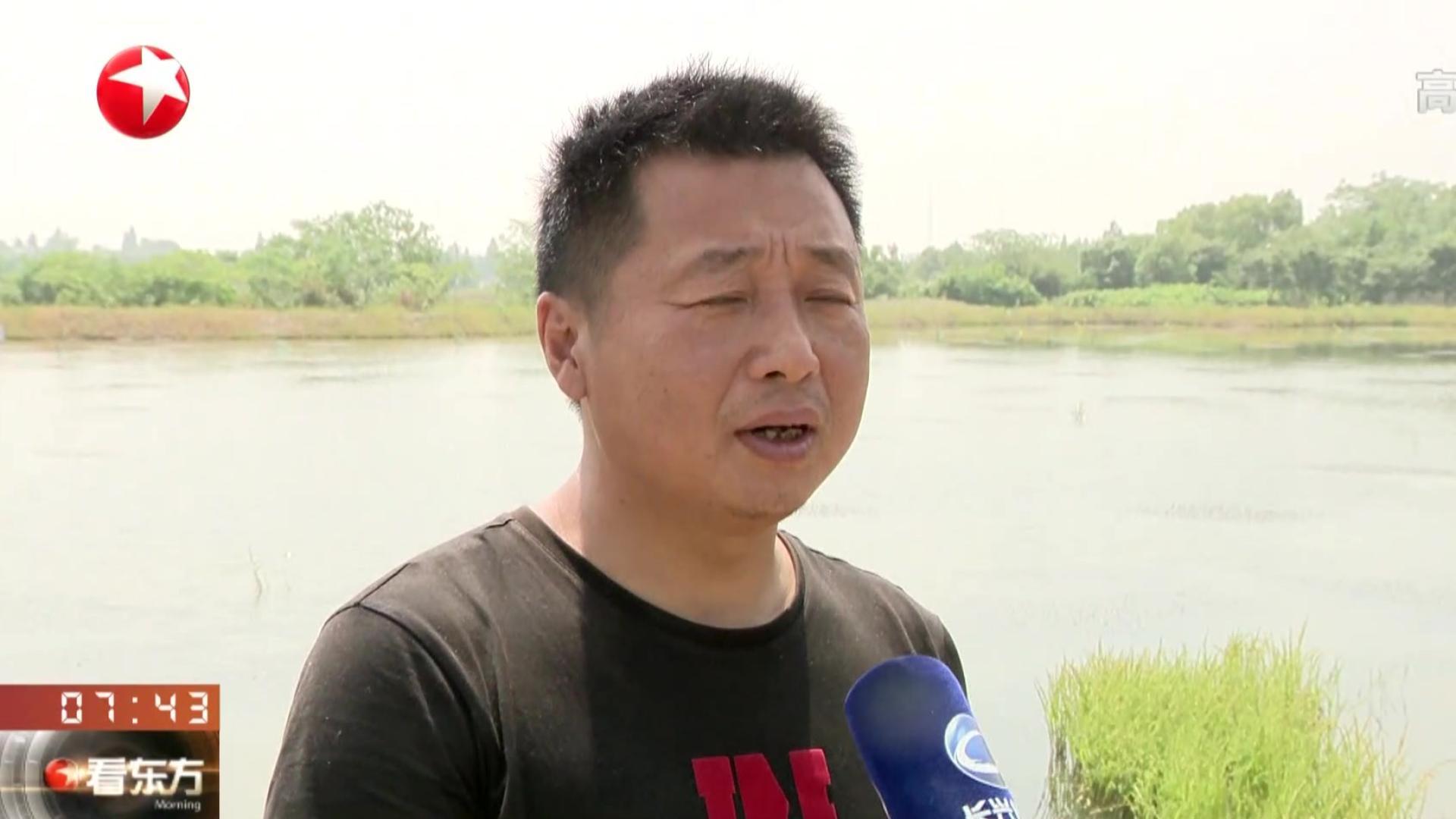 浙江长兴:千亩基地小龙虾开始上市  年产量约35万斤