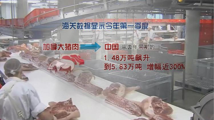 猪肉贸易444.jpg