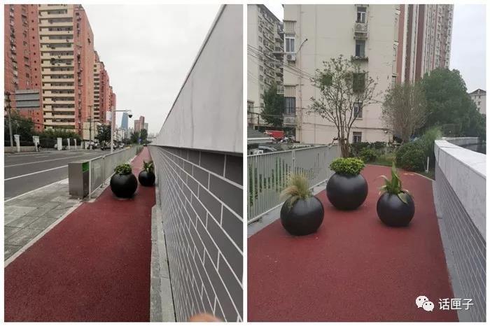 """针对电瓶车和非机动车""""乱入"""",暂时设置花艺盆景等路障,残疾轮椅和婴儿推车可以通过步道中间的残疾人坡道进入步道"""
