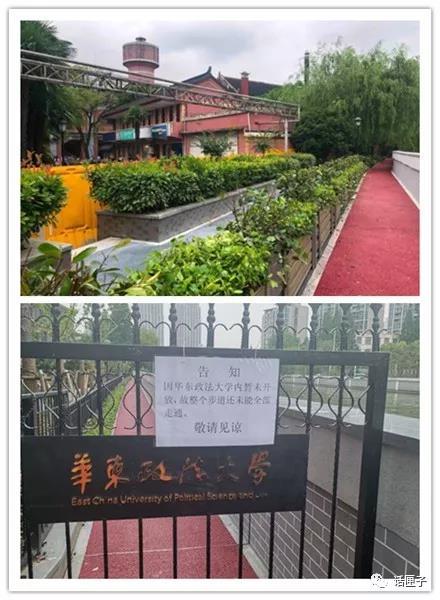 新贯通段的华政校园段,用绿植进行了隔离,再辅以红色和蓝色沥青标识,以区分健身步道与校园两个区域