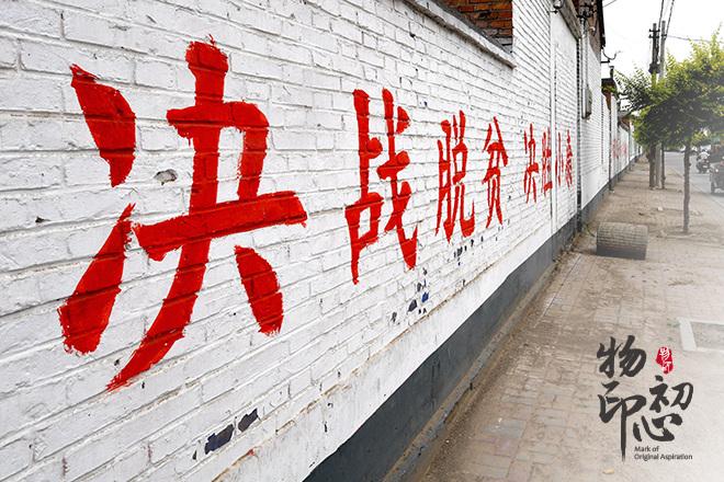 2019年6月21日拍摄的河北新河县新河镇六户村一角。