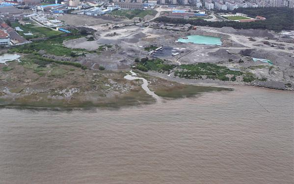 图说:炮台湾国家湿地公园旧照。宝山区供图