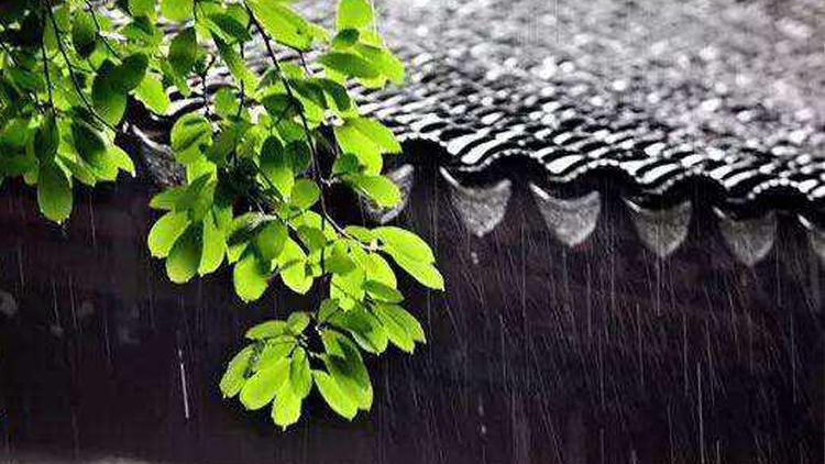 上海20年来最长梅雨期宣告结束