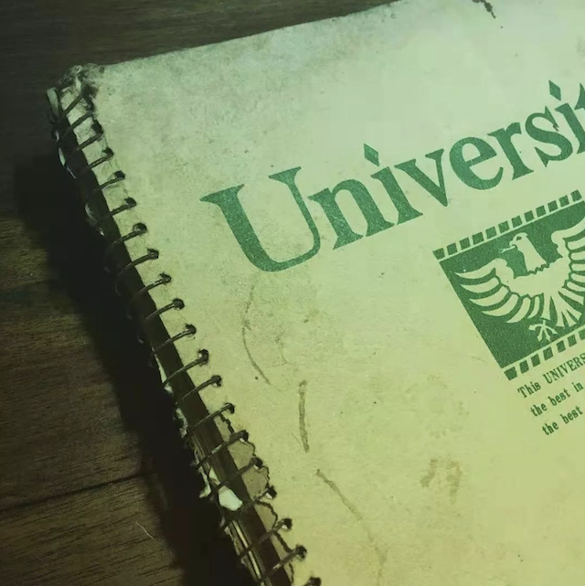 河警官的日记本(从1990年一直记录至今)