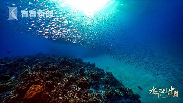 水下·你未见的中国00023.jpg
