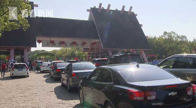 视频|熊猫宝宝集体过生日 园方调整停车区域应对客流