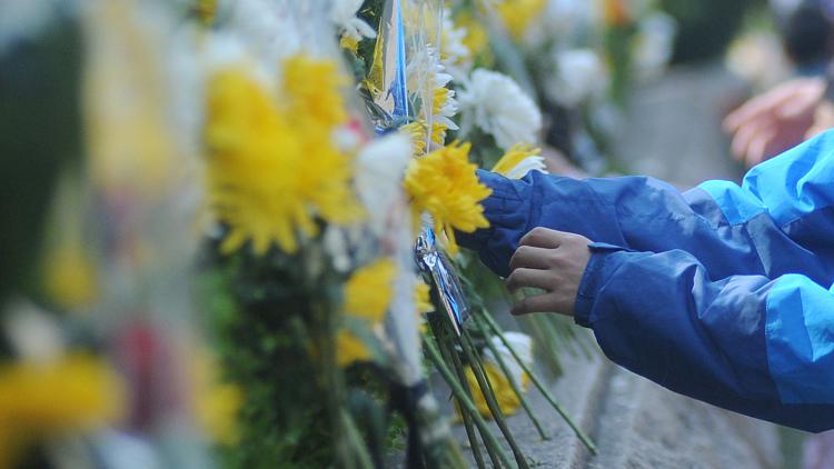 国务院发布公告:4月4日举行全国性哀悼活动