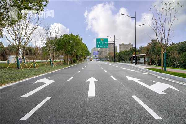 奉贤区望园路整体提质改善工程实施后