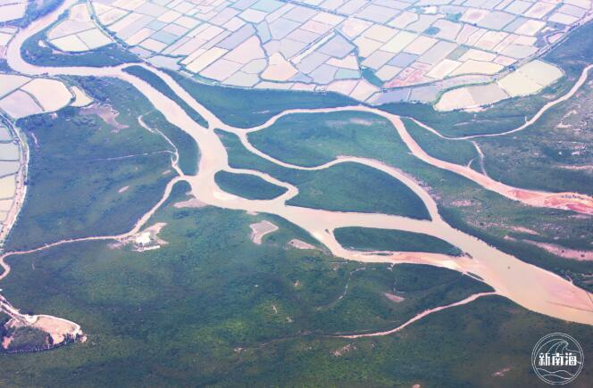 廣西山口紅樹林國家級自然保護區  圖片來源:自然資源部南海局