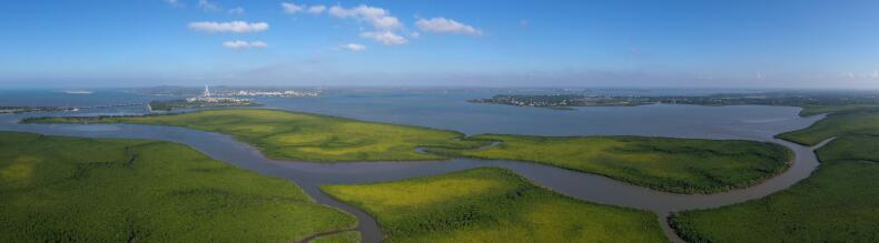 鳥瞰東寨港  攝影:馮爾輝