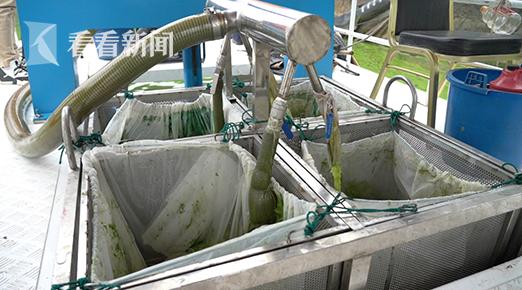 新型蓝藻打捞船