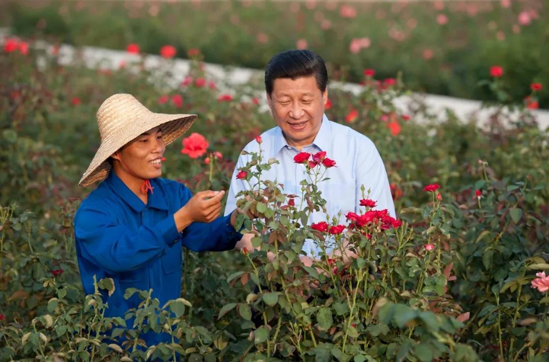 2013年4月9日,在三亚亚龙湾兰德玫瑰风情产业园,习近平和正在劳动的黎族农民技术员蒲日成亲切交谈。海南日报记者 王凯 摄