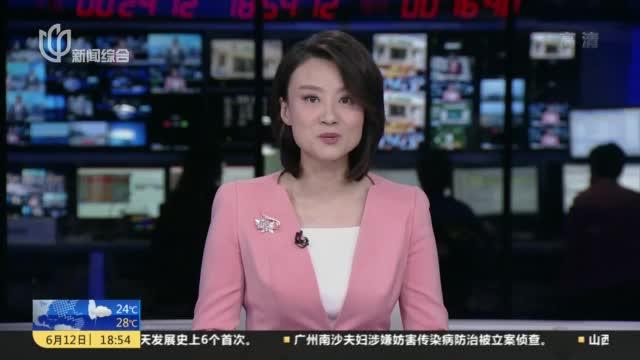 上海:非遗绒绣活态传承  传习班覆盖高桥所有村居
