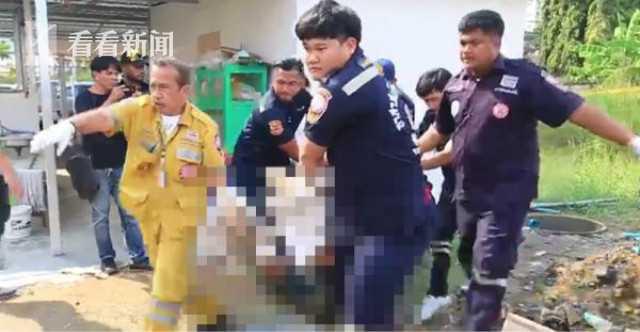 泰国一素食餐馆老板杀人后将人肉剁碎混入饭菜给食客吃