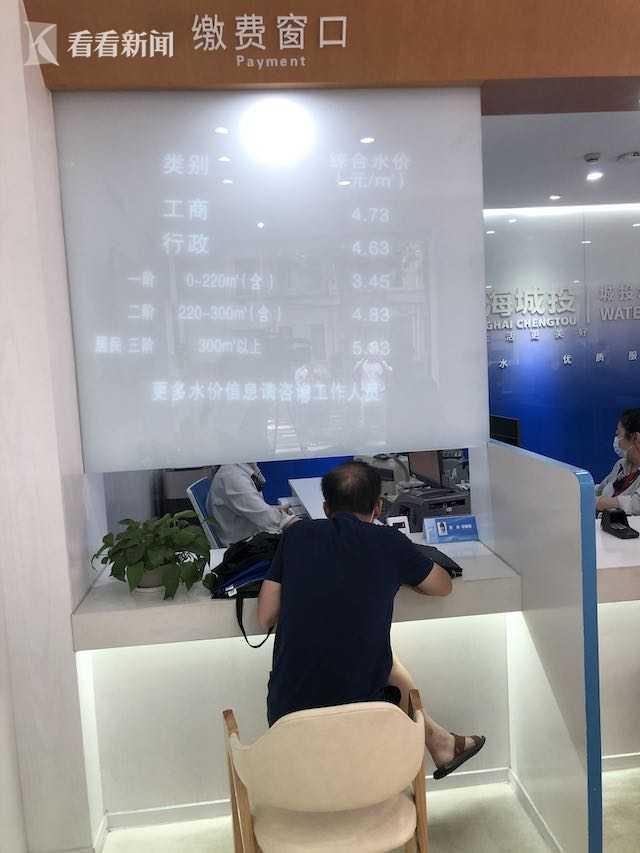 上海电网一户多人口_人口普查(2)